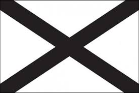 Southern Nationalist Flag